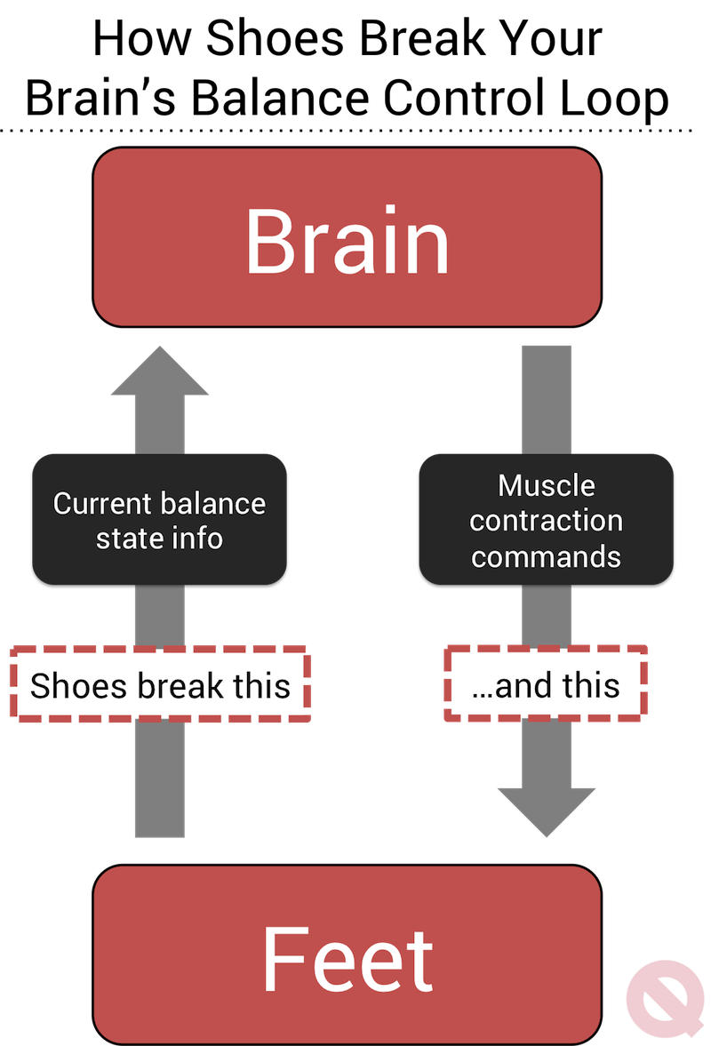 quitting sitting barefoot standing healthier foot brain control loop infographic