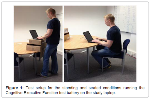 quitting sitting standing desk hurt performance sitting standing cognition mental ability thinking ergonomics study laptop